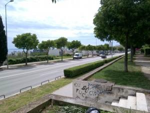 ZTE V5S Photo